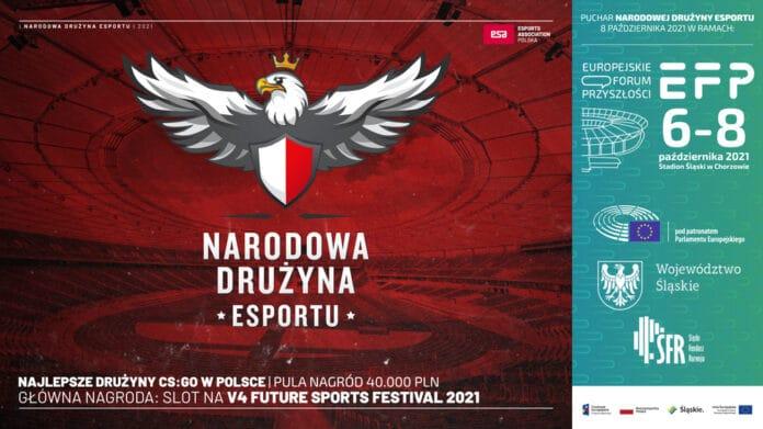 Narodowa Drużyna Esportu